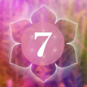 numerologi 7